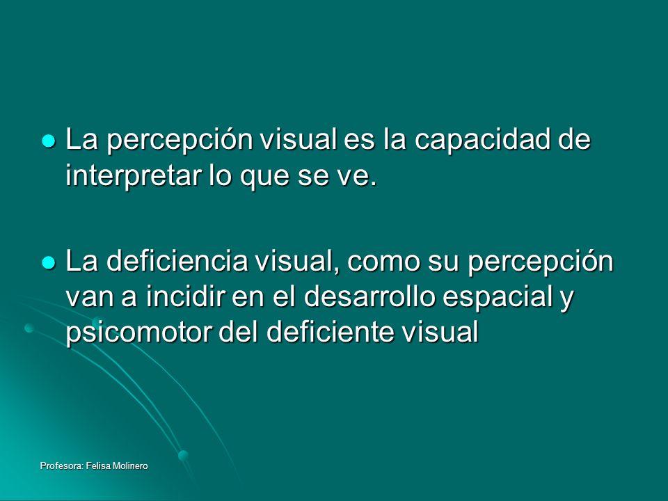 Profesora: Felisa Molinero La percepción visual es la capacidad de interpretar lo que se ve. La percepción visual es la capacidad de interpretar lo qu