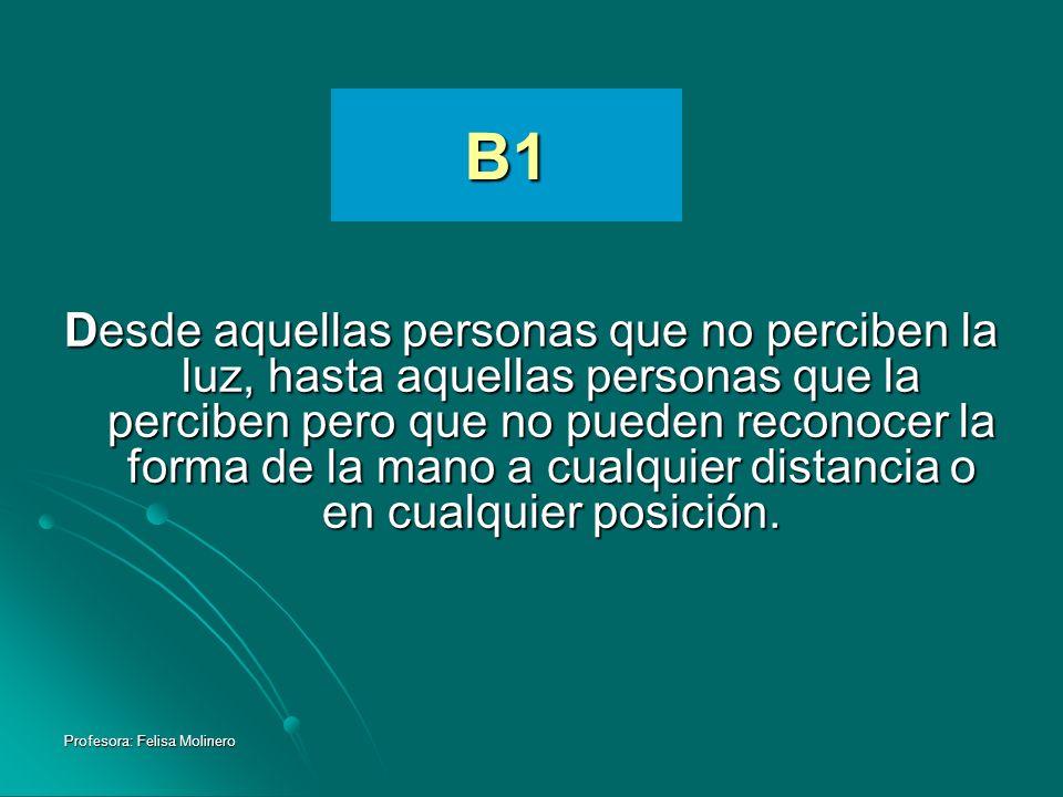 Profesora: Felisa Molinero B1 Desde aquellas personas que no perciben la luz, hasta aquellas personas que la perciben pero que no pueden reconocer la