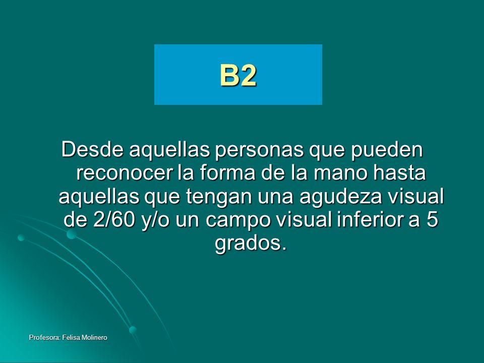 Profesora: Felisa Molinero B2 Desde aquellas personas que pueden reconocer la forma de la mano hasta aquellas que tengan una agudeza visual de 2/60 y/