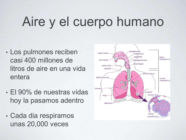 Aire y el cuerpo humano Los pulmones reciben casi 400 millones de litros de aire en una vida entera El 90% de nuestras vidas hoy la pasamos adentro Cada dia respiramos unas 20,000 veces