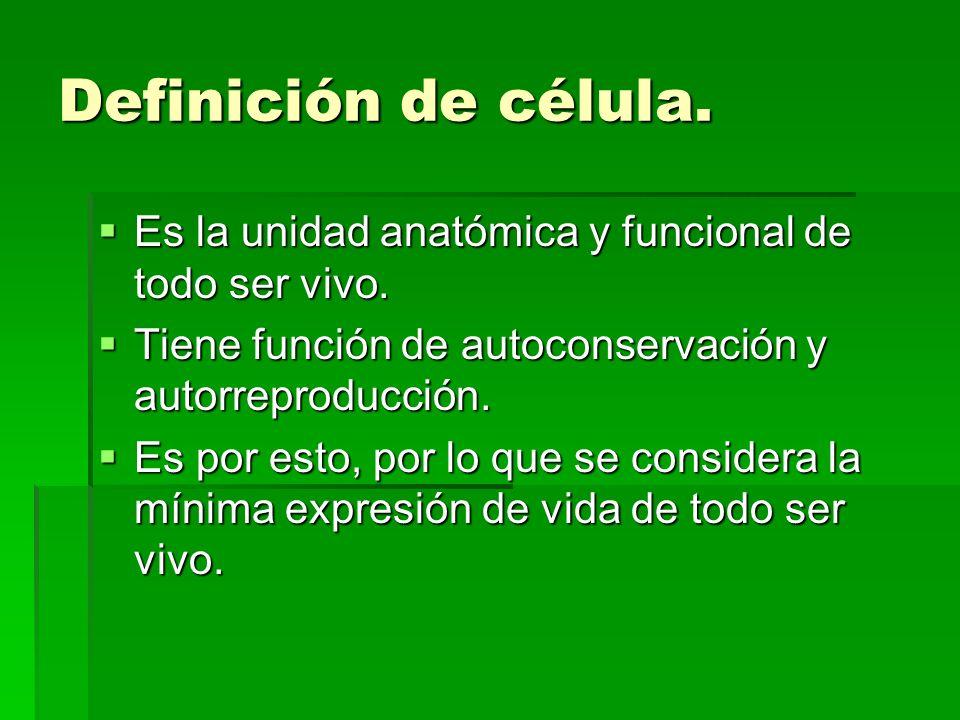 Definición de célula. Es la unidad anatómica y funcional de todo ser vivo. Es la unidad anatómica y funcional de todo ser vivo. Tiene función de autoc