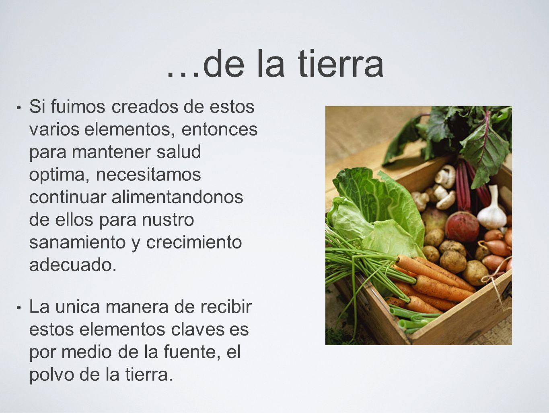 …de la tierra Si fuimos creados de estos varios elementos, entonces para mantener salud optima, necesitamos continuar alimentandonos de ellos para nus