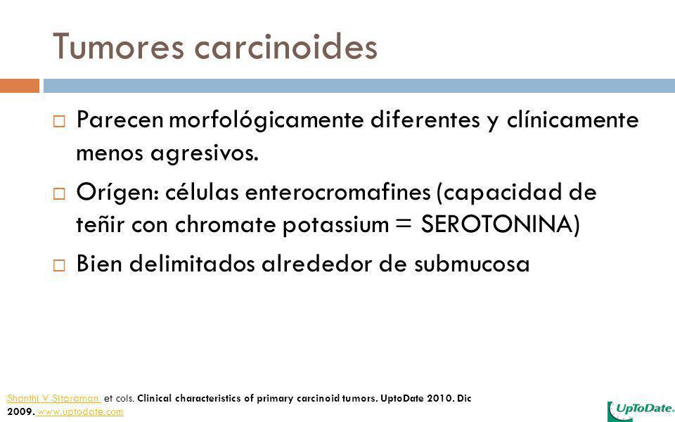 Tumores carcinoides Parecen morfológicamente diferentes y clínicamente menos agresivos. Orígen: células enterocromafines (capacidad de teñir con chrom