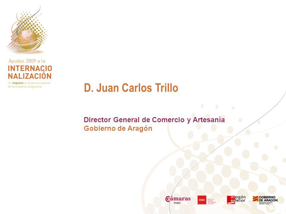 D. Juan Carlos Trillo Director General de Comercio y Artesanía Gobierno de Aragón