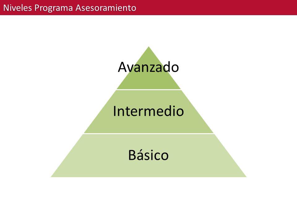 Niveles Programa Asesoramiento Avanzado Intermedio Básico