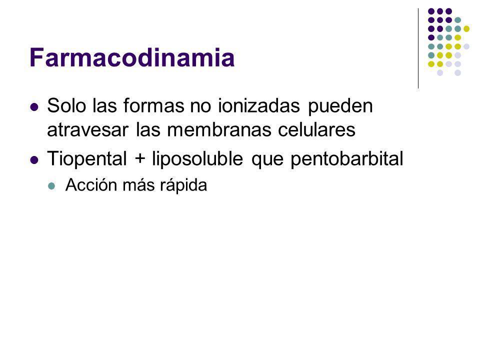 Farmacodinamia Solo las formas no ionizadas pueden atravesar las membranas celulares Tiopental + liposoluble que pentobarbital Acción más rápida