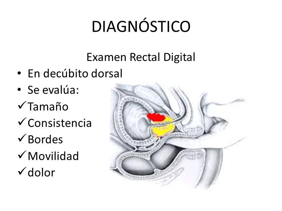 DIAGNÓSTICO Examen Rectal Digital En decúbito dorsal Se evalúa: Tamaño Consistencia Bordes Movilidad dolor