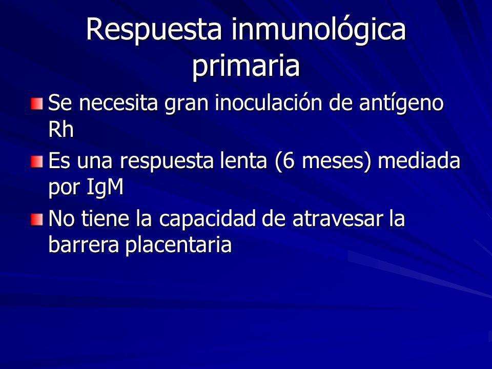 Respuesta inmunológica primaria Se necesita gran inoculación de antígeno Rh Es una respuesta lenta (6 meses) mediada por IgM No tiene la capacidad de