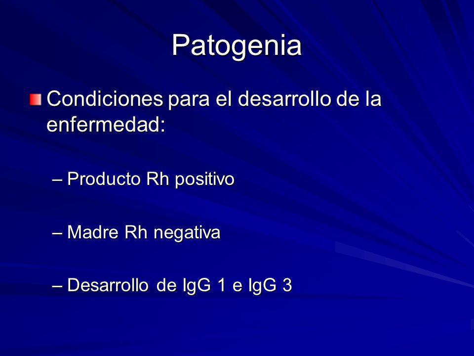 Patogenia Condiciones para el desarrollo de la enfermedad: –Producto Rh positivo –Madre Rh negativa –Desarrollo de IgG 1 e IgG 3
