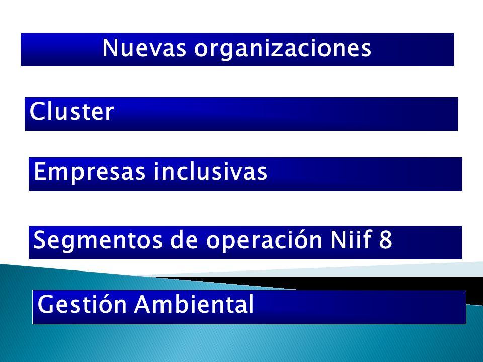 Nuevas organizaciones Cluster Empresas inclusivas Segmentos de operación Niif 8 Gestión Ambiental