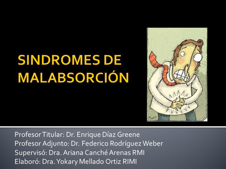 Profesor Titular: Dr. Enrique Díaz Greene Profesor Adjunto: Dr. Federico Rodríguez Weber Supervisó: Dra. Ariana Canché Arenas RMI Elaboró: Dra. Yokary