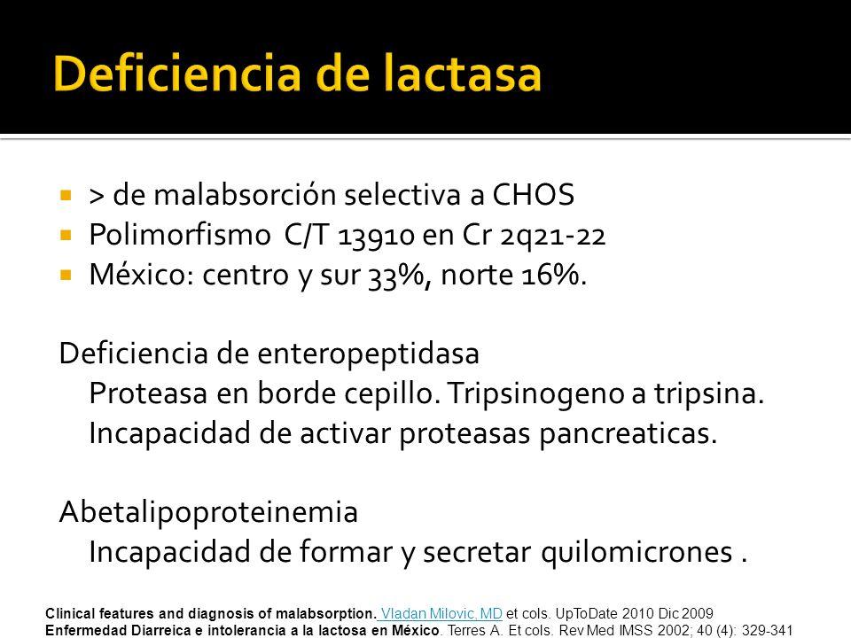 > de malabsorción selectiva a CHOS Polimorfismo C/T 13910 en Cr 2q21-22 México: centro y sur 33%, norte 16%. Deficiencia de enteropeptidasa Proteasa e