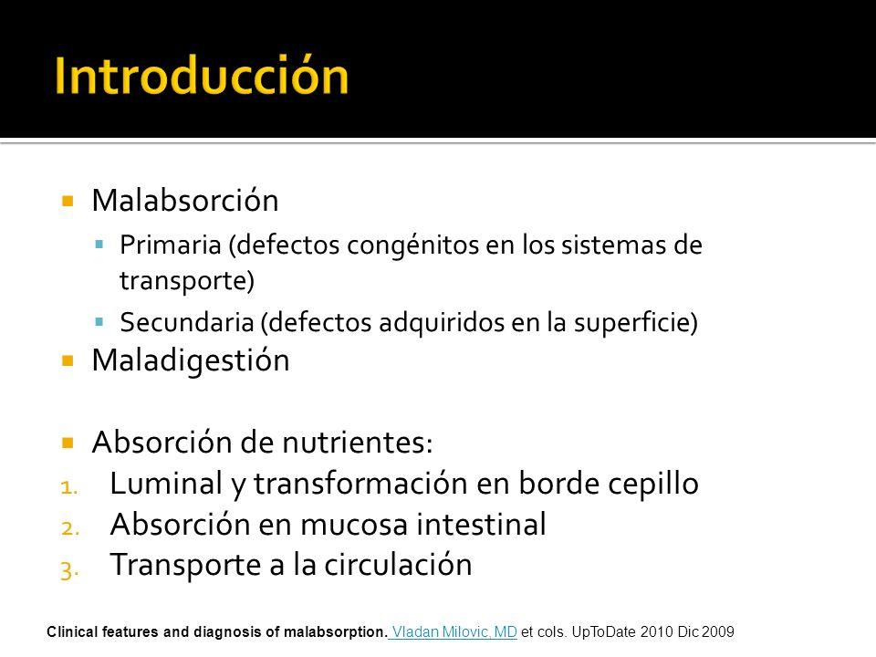 Malabsorción Primaria (defectos congénitos en los sistemas de transporte) Secundaria (defectos adquiridos en la superficie) Maladigestión Absorción de