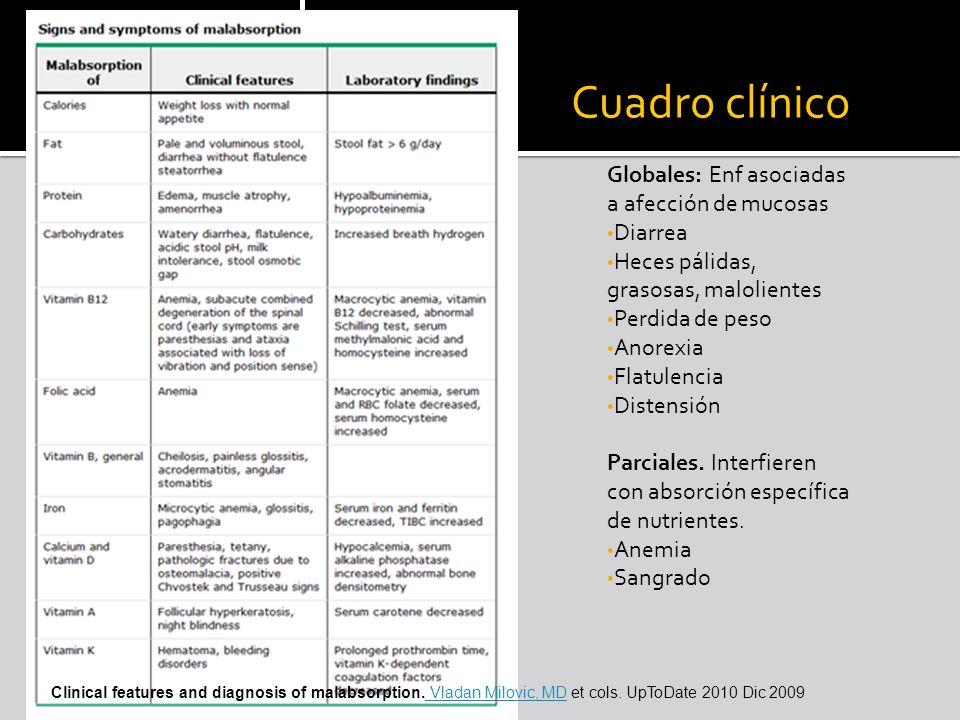 Cuadro clínico Globales: Enf asociadas a afección de mucosas Diarrea Heces pálidas, grasosas, malolientes Perdida de peso Anorexia Flatulencia Distens