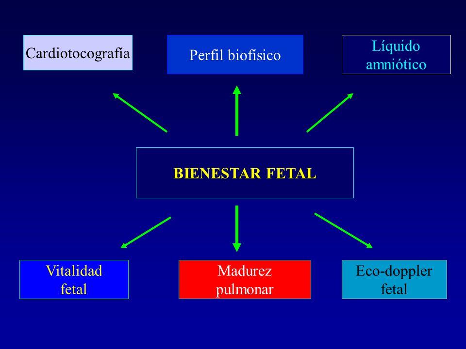 BIENESTAR FETAL Cardiotocografía Perfil biofísico Líquido amniótico Vitalidad fetal Madurez pulmonar Eco-doppler fetal
