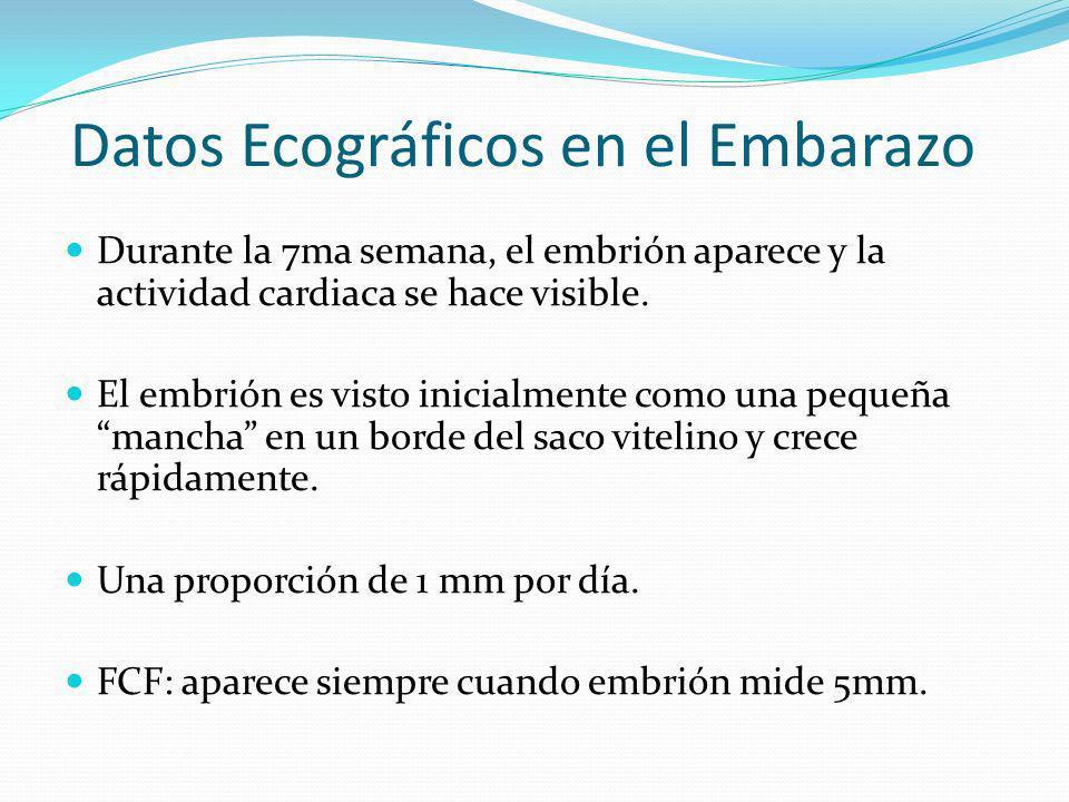 Datos Ecográficos en el Embarazo Durante la 7ma semana, el embrión aparece y la actividad cardiaca se hace visible. El embrión es visto inicialmente c