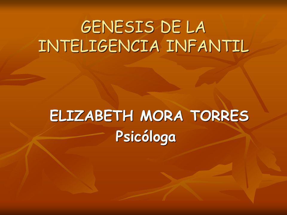 GENESIS DE LA INTELIGENCIA INFANTIL ELIZABETH MORA TORRES ELIZABETH MORA TORRESPsicóloga