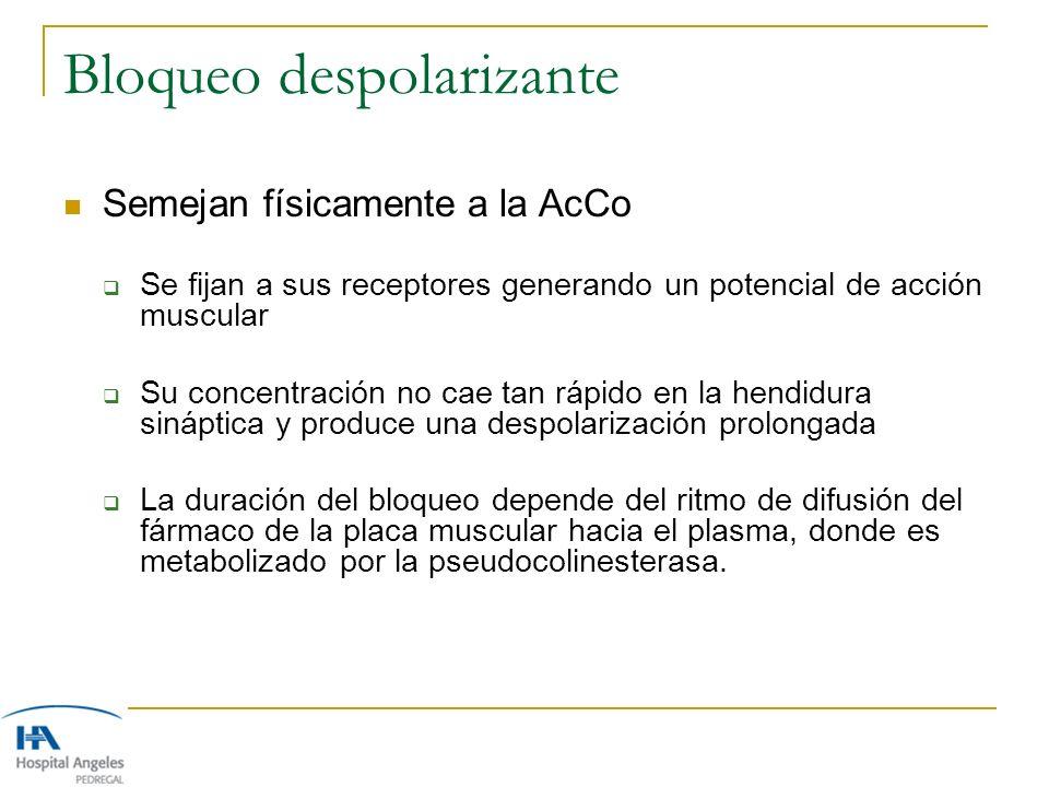 Bloqueo despolarizante Semejan físicamente a la AcCo Se fijan a sus receptores generando un potencial de acción muscular Su concentración no cae tan r