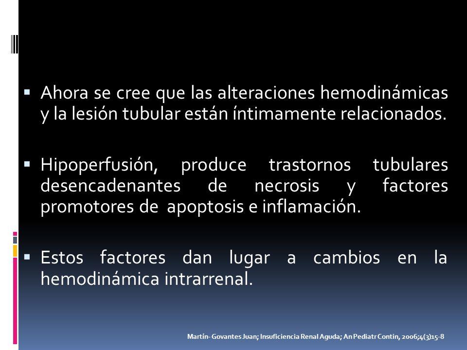 Ahora se cree que las alteraciones hemodinámicas y la lesión tubular están íntimamente relacionados. Hipoperfusión, produce trastornos tubulares desen