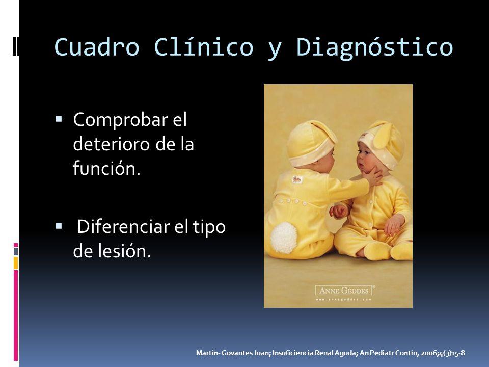 Cuadro Clínico y Diagnóstico Comprobar el deterioro de la función. Diferenciar el tipo de lesión. Martín- Govantes Juan; Insuficiencia Renal Aguda; An