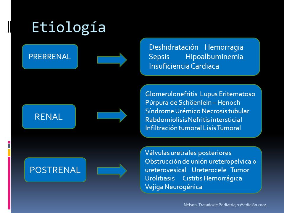 Etiología Nelson, Tratado de Pediatría, 17ª edición 2004. PRERRENAL Deshidratación Hemorragia Sepsis Hipoalbuminemia Insuficiencia Cardiaca RENAL Glom