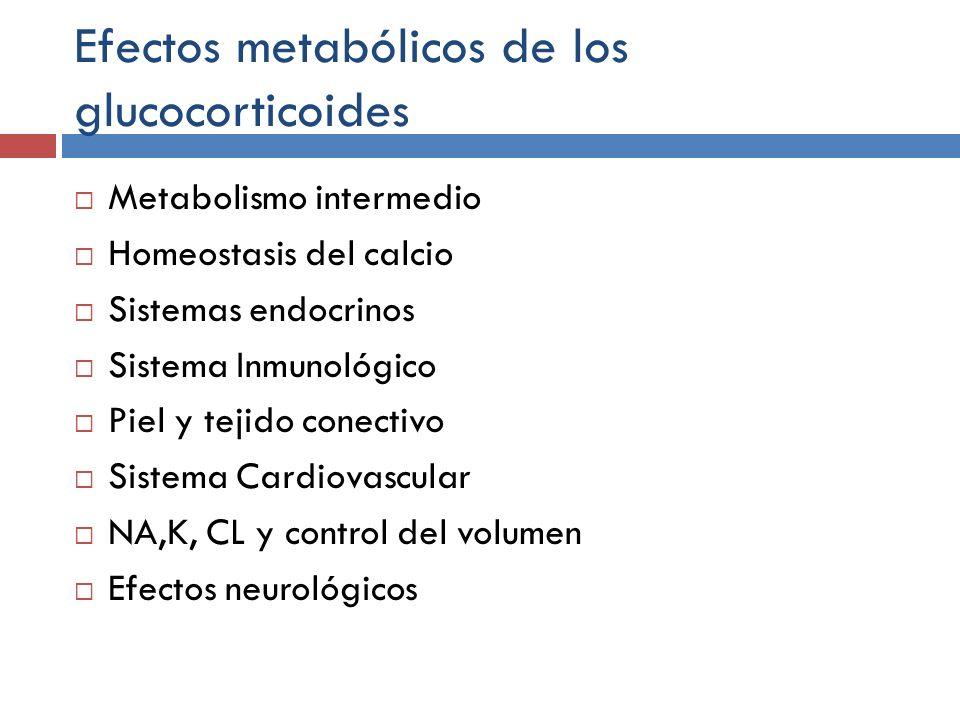 Efectos metabólicos de los glucocorticoides Metabolismo intermedio Homeostasis del calcio Sistemas endocrinos Sistema Inmunológico Piel y tejido conec