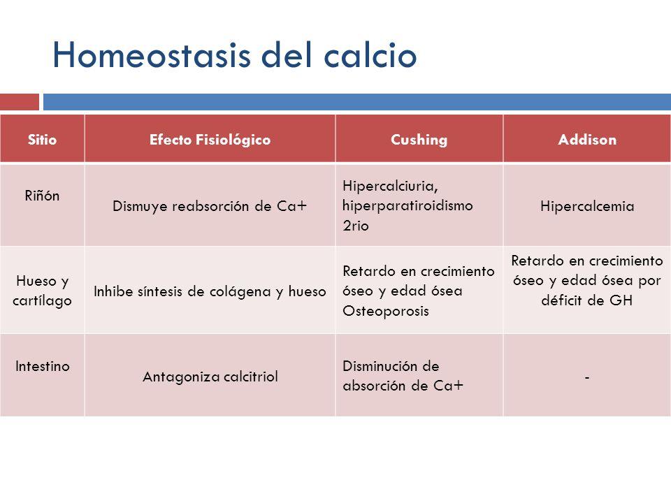 Homeostasis del calcio SitioEfecto FisiológicoCushingAddison Riñón Dismuye reabsorción de Ca+ Hipercalciuria, hiperparatiroidismo 2rio Hipercalcemia H