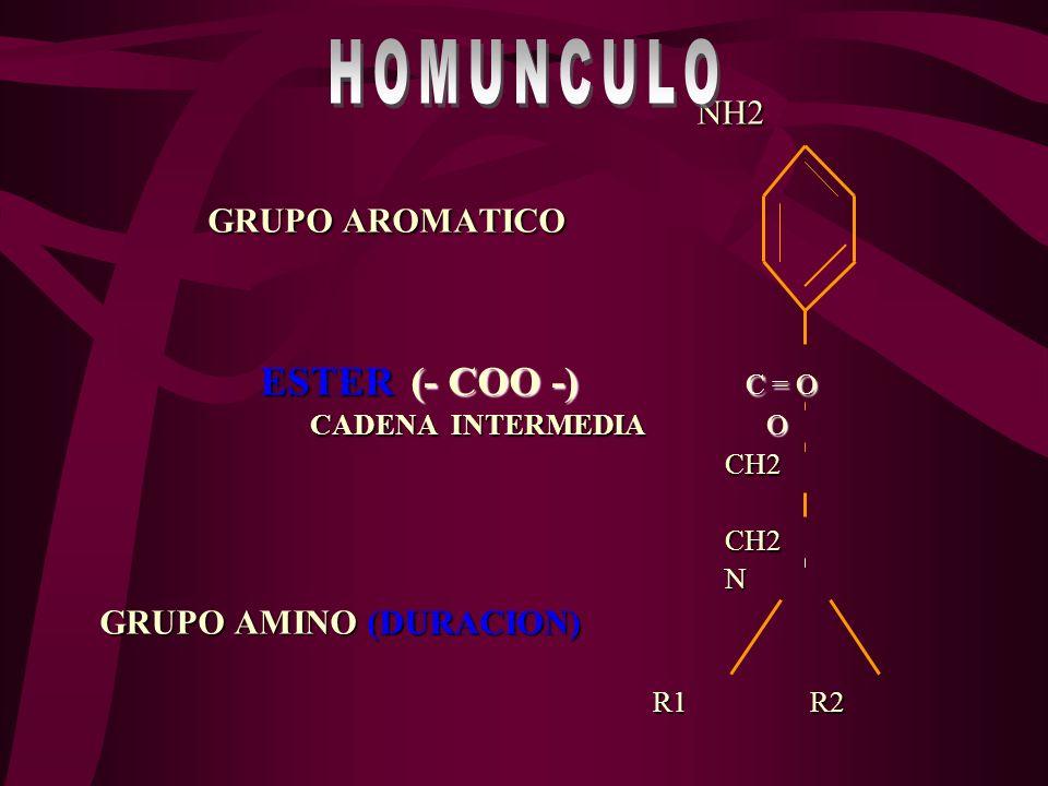 COO H+HO CH2 C – O– CH2 C – O – CH2 H2O O ACIDO AROMATICO ALCOHOL AMINO PLASMA