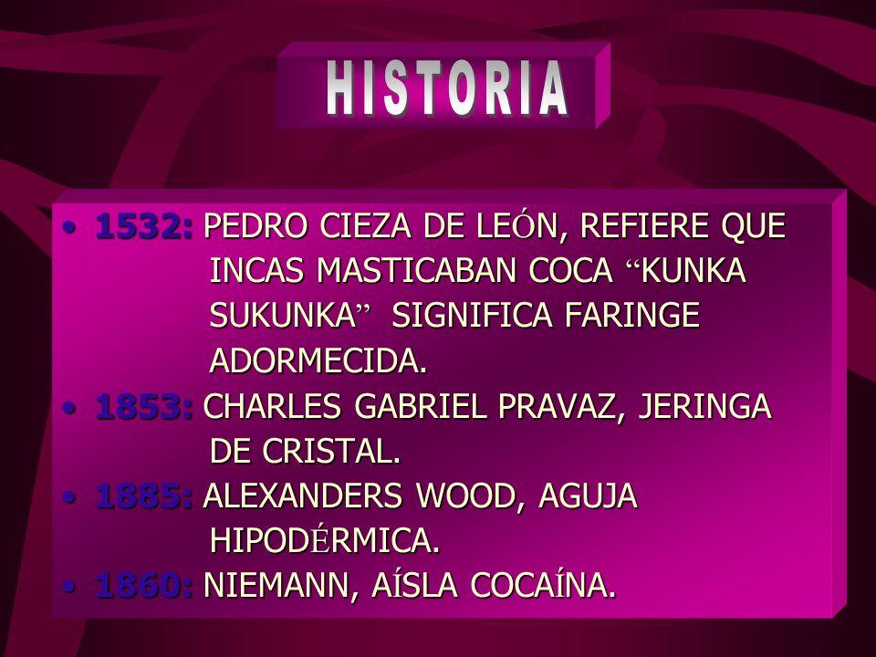 1532: PEDRO CIEZA DE LE Ó N, REFIERE QUE1532: PEDRO CIEZA DE LE Ó N, REFIERE QUE INCAS MASTICABAN COCA KUNKA INCAS MASTICABAN COCA KUNKA SUKUNKA SIGNIFICA FARINGE SUKUNKA SIGNIFICA FARINGE ADORMECIDA.