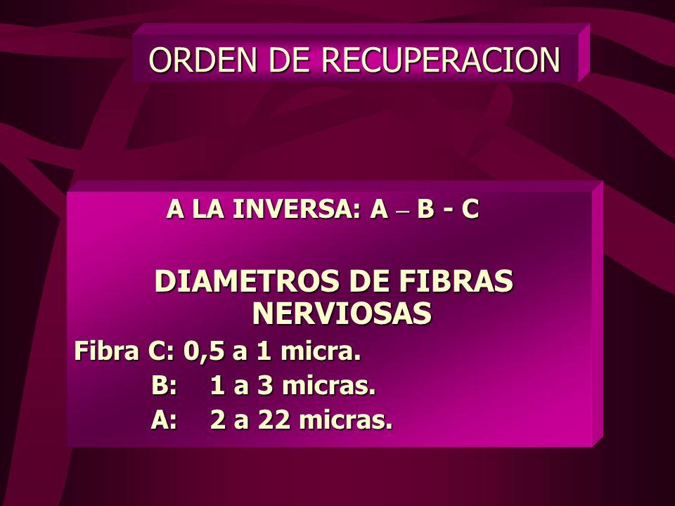 ORDEN DEL BLOQUEO Grupo C 1.- Grupo C 2.- Grupo B 3.- Grupo A
