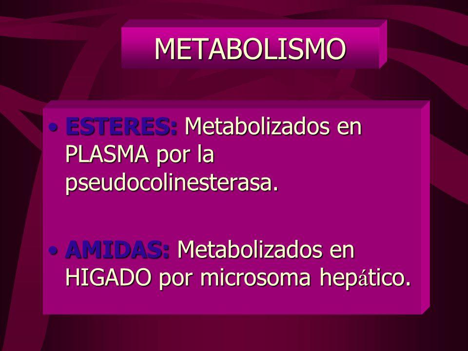 ORDEN DE RECUPERACION A LA INVERSA: A – B - C DIAMETROS DE FIBRAS NERVIOSAS DIAMETROS DE FIBRAS NERVIOSAS Fibra C: 0,5 a 1 micra. B: 1 a 3 micras. B: