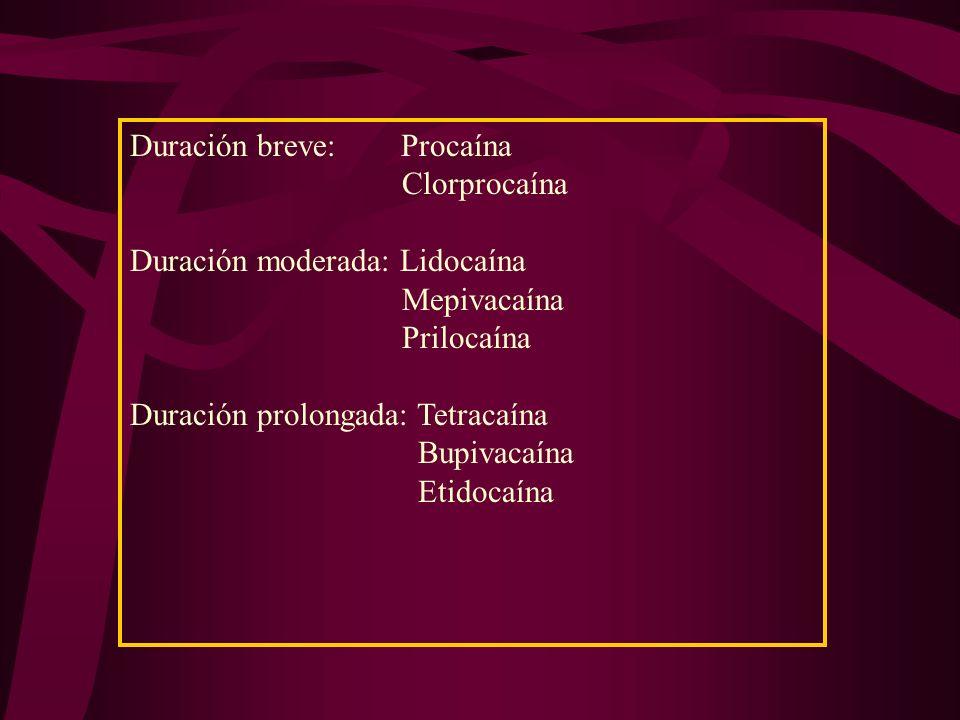 Potencia Baja Procaína 1008.9 Potencia Intermedia Mepivacaína Prilocaína Clorprocaína Lidocaína 130 129 810 366 7.7 8.0 9.1 7.8 Potencia Alta Tetracaí