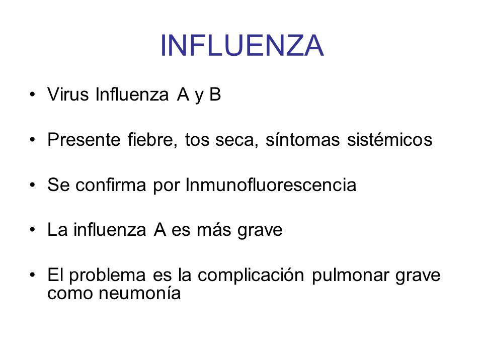 INFLUENZA Virus Influenza A y B Presente fiebre, tos seca, síntomas sistémicos Se confirma por Inmunofluorescencia La influenza A es más grave El prob