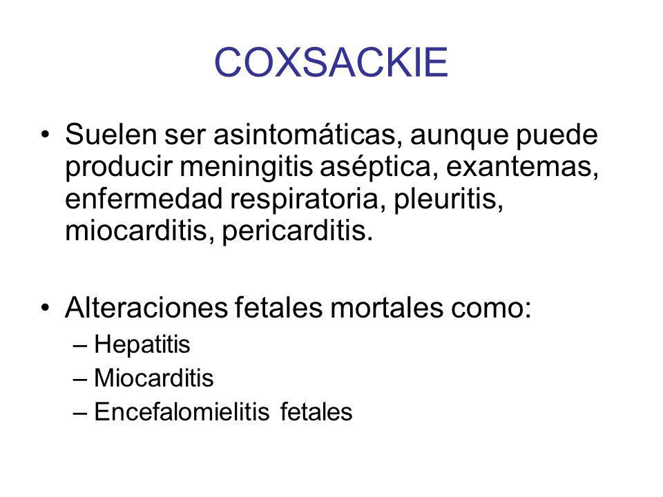 COXSACKIE Suelen ser asintomáticas, aunque puede producir meningitis aséptica, exantemas, enfermedad respiratoria, pleuritis, miocarditis, pericarditi