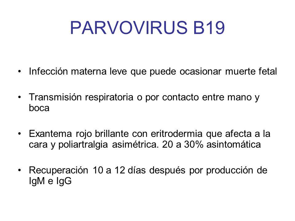 PARVOVIRUS B19 Infección materna leve que puede ocasionar muerte fetal Transmisión respiratoria o por contacto entre mano y boca Exantema rojo brillan