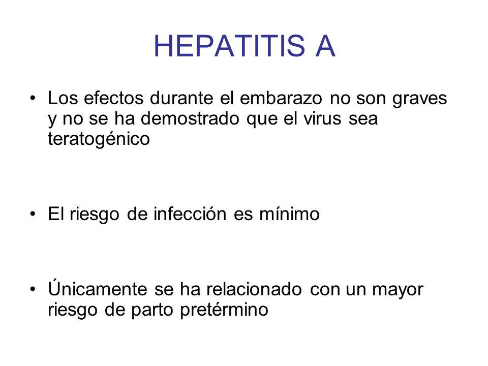 HEPATITIS A Los efectos durante el embarazo no son graves y no se ha demostrado que el virus sea teratogénico El riesgo de infección es mínimo Únicame