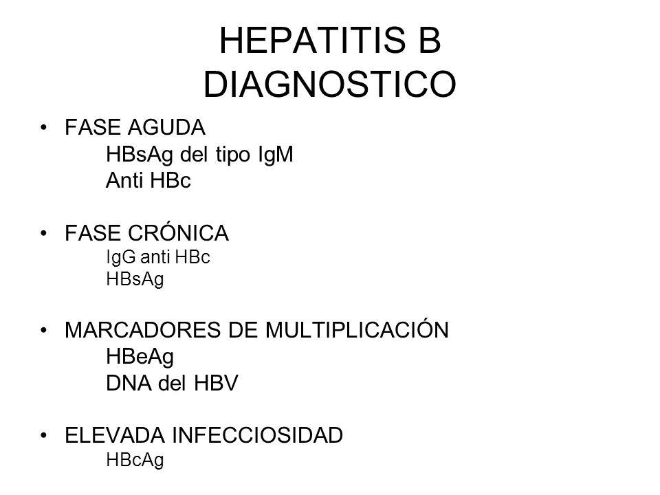 HEPATITIS B DIAGNOSTICO FASE AGUDA HBsAg del tipo IgM Anti HBc FASE CRÓNICA IgG anti HBc HBsAg MARCADORES DE MULTIPLICACIÓN HBeAg DNA del HBV ELEVADA