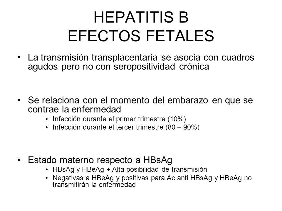HEPATITIS B EFECTOS FETALES La transmisión transplacentaria se asocia con cuadros agudos pero no con seropositividad crónica Se relaciona con el momen