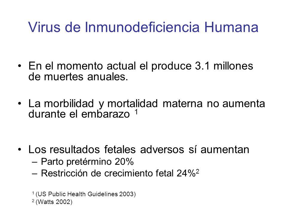 Virus de Inmunodeficiencia Humana En el momento actual el produce 3.1 millones de muertes anuales. La morbilidad y mortalidad materna no aumenta duran