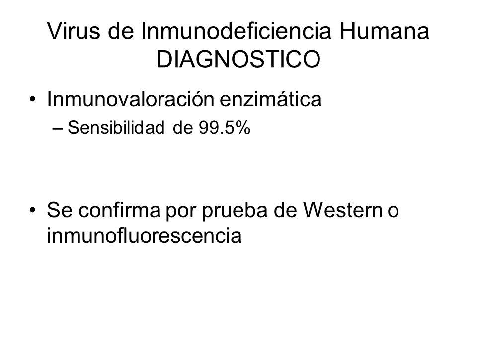 Virus de Inmunodeficiencia Humana DIAGNOSTICO Inmunovaloración enzimática –Sensibilidad de 99.5% Se confirma por prueba de Western o inmunofluorescenc