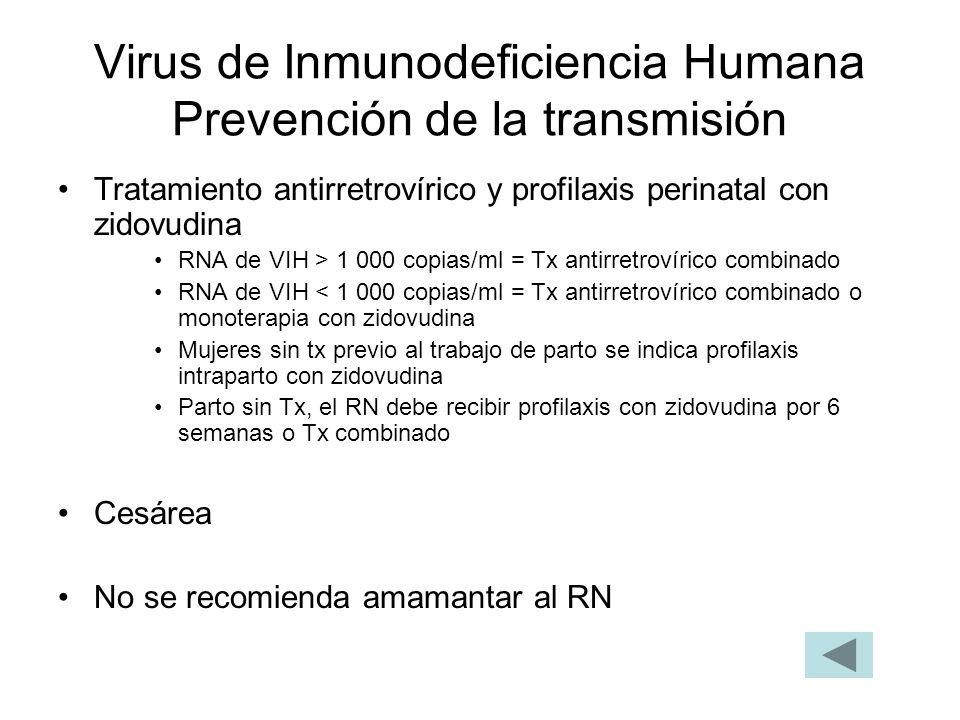 Virus de Inmunodeficiencia Humana Prevención de la transmisión Tratamiento antirretrovírico y profilaxis perinatal con zidovudina RNA de VIH > 1 000 c