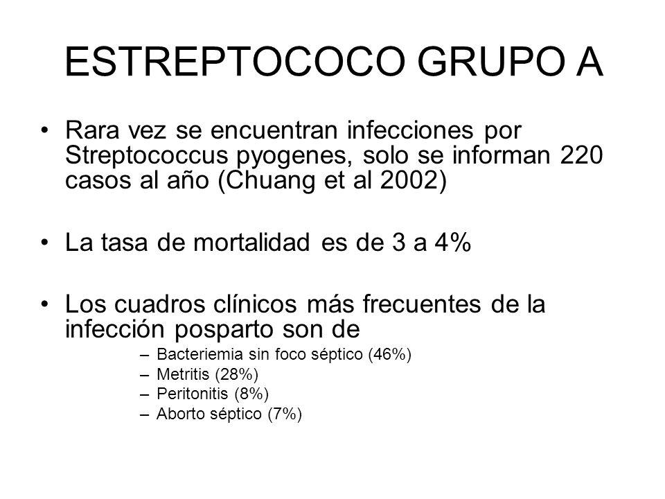 ESTREPTOCOCO GRUPO A Rara vez se encuentran infecciones por Streptococcus pyogenes, solo se informan 220 casos al año (Chuang et al 2002) La tasa de m