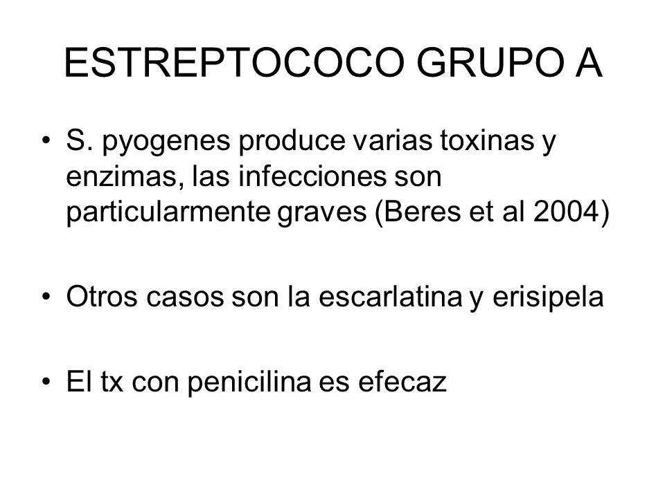 ESTREPTOCOCO GRUPO A S. pyogenes produce varias toxinas y enzimas, las infecciones son particularmente graves (Beres et al 2004) Otros casos son la es