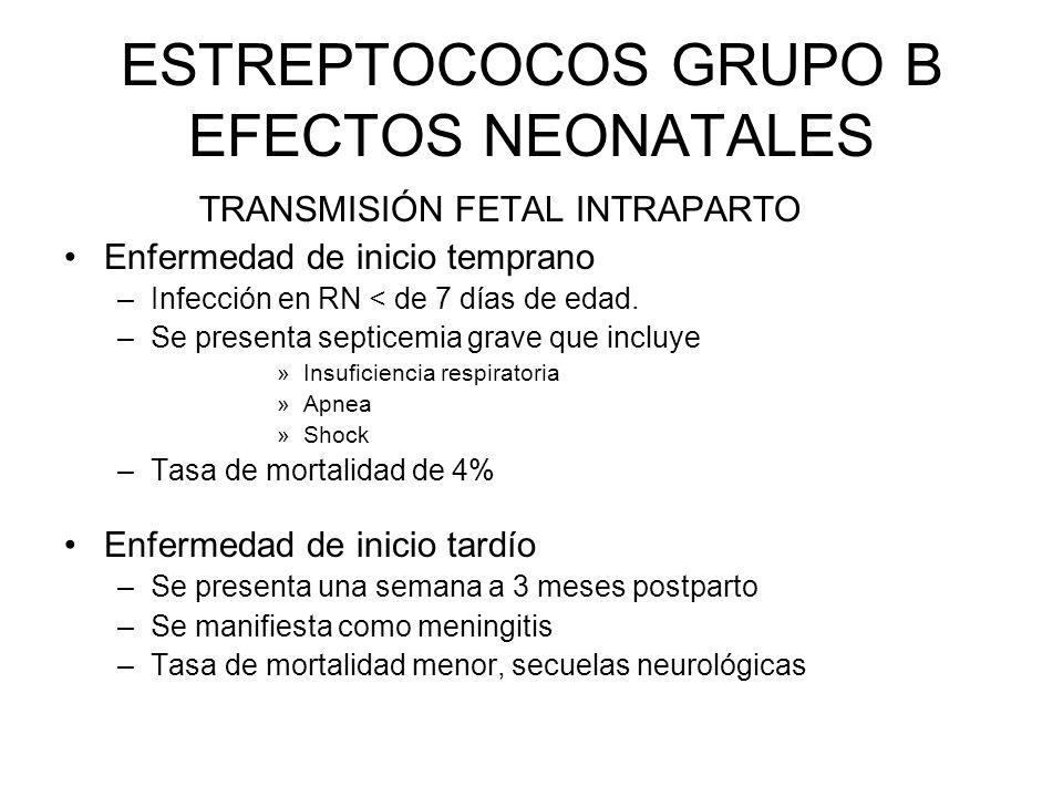 ESTREPTOCOCOS GRUPO B EFECTOS NEONATALES TRANSMISIÓN FETAL INTRAPARTO Enfermedad de inicio temprano –Infección en RN < de 7 días de edad. –Se presenta
