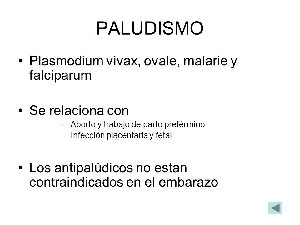 PALUDISMO Plasmodium vivax, ovale, malarie y falciparum Se relaciona con –Aborto y trabajo de parto pretérmino –Infección placentaria y fetal Los anti