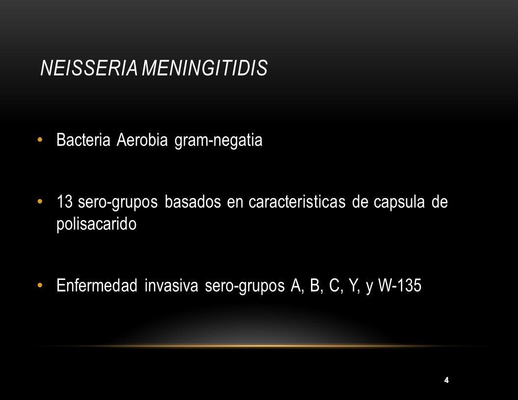 4 NEISSERIA MENINGITIDIS Bacteria Aerobia gram-negatia 13 sero-grupos basados en caracteristicas de capsula de polisacarido Enfermedad invasiva sero-g