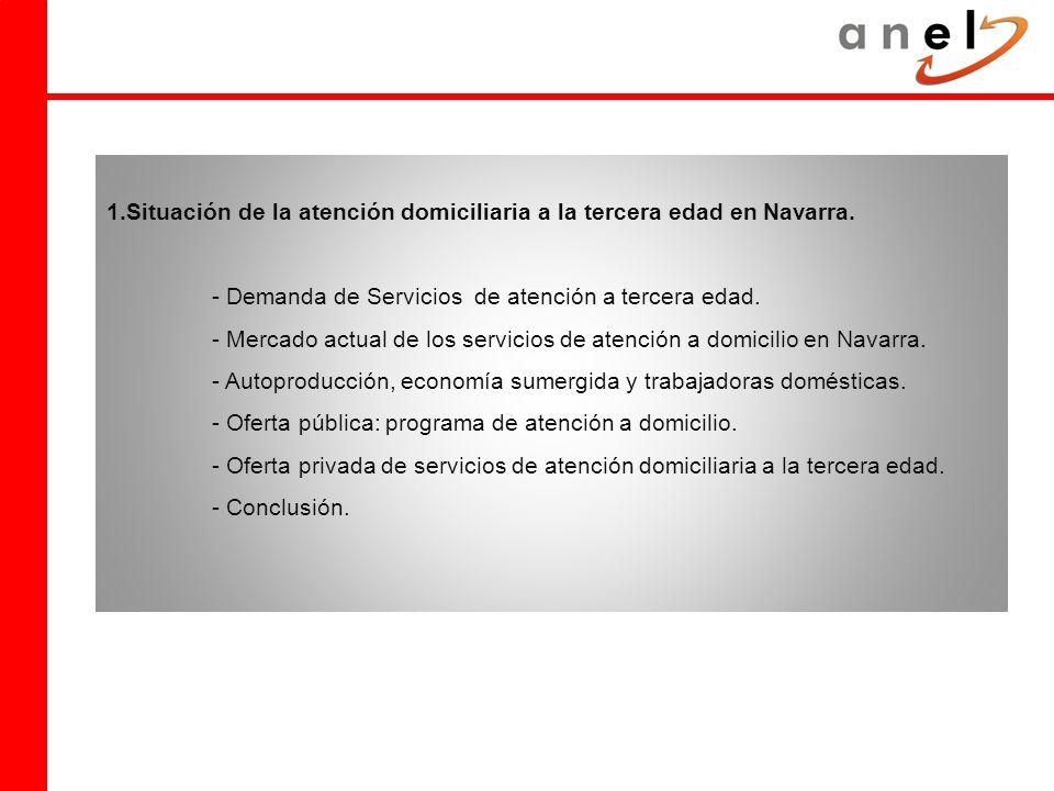 1.Situación de la atención domiciliaria a la tercera edad en Navarra.