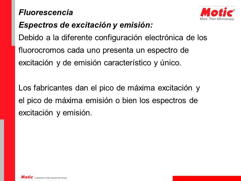 Fluorescencia Espectros de excitación y emisión: Debido a la diferente configuración electrónica de los fluorocromos cada uno presenta un espectro de