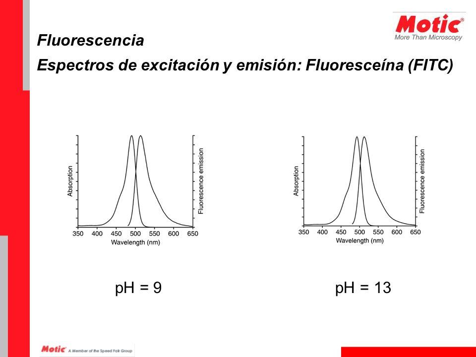 Fluorescencia Espectros de excitación y emisión: Fluoresceína (FITC) pH = 9 pH = 13