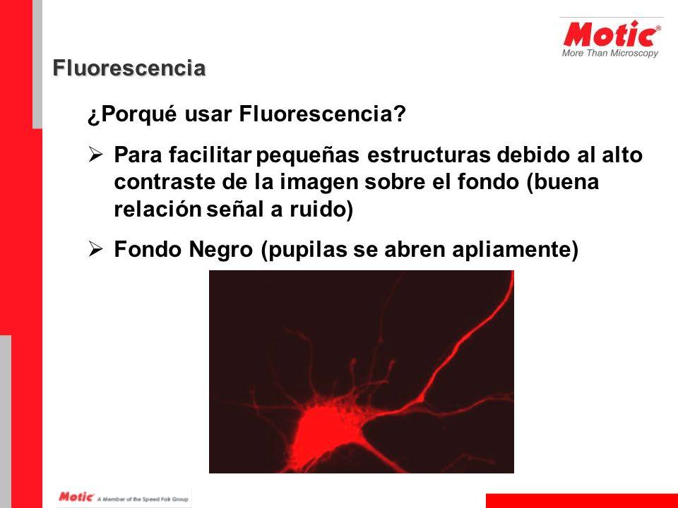 ¿Porqué usar Fluorescencia? Para facilitar pequeñas estructuras debido al alto contraste de la imagen sobre el fondo (buena relación señal a ruido) Fo
